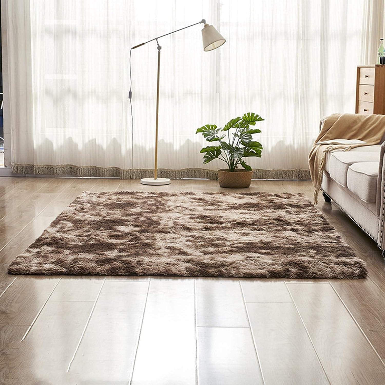 YonCog Modern Decor Rug Plush Reservation San Francisco Mall Nordic Style Carpet Coffee