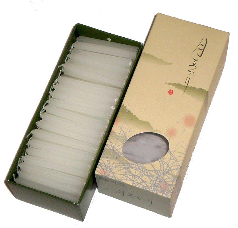 急行するせがむ宗教東海製蝋のろうそく 月あかり 20分約160本