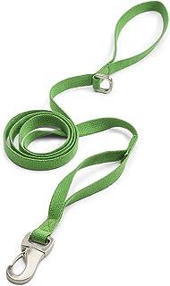 سلسلة توجيه للكلاب من ويست باو تروفز مع قنب من الجلد، مقاس صغير، لون أخضر، صنع في الولايات المتحدة الأمريكية