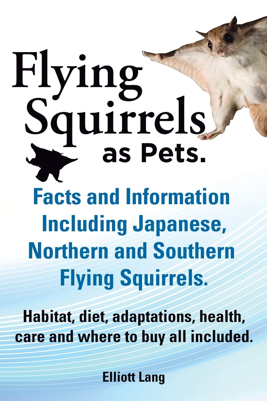 Image OfFlying Squirrels As Pets. Facts And Information. Including Japanese, Northern And Southern Flying Squirrels. Habitat, Diet...