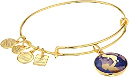Alex and Ani - Charity By Design Bright Future