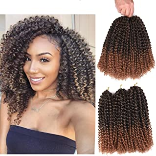 Refined Hair 12inch 6packs/lot Ombre Malibob Jerry Curly Twist Hair Synthetic Crochet Braids Freetress Braiding Hair Extensions (12 inch, T30)