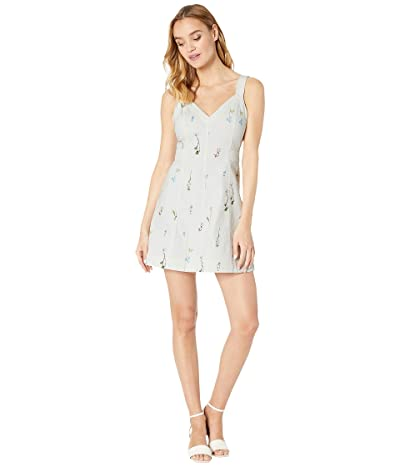 Parker Vara Dress (Mini Gigi) Women