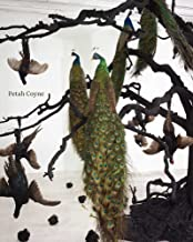 Petah Coyne: Everything That Rises Must Converge