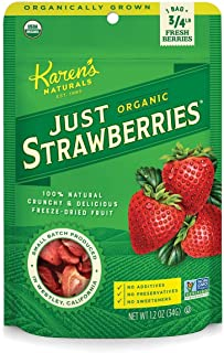Karen's Naturals Just Tomatoes, Organic Just Strawberries 1.2 Ounce Pouch (Pack of 4) (Packaging May Vary)