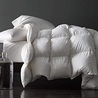 Royoliving Premium Silver Down Comforter Twin Size All Season Solid White 100% Egyptian Cotton Cover Down Proof Duvet Insert with Corner Tabs, 35 Oz