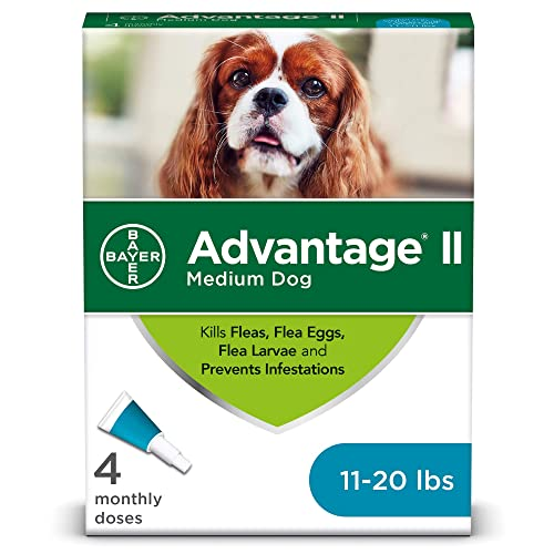 Flea Tick And Heartworm Prevention For Dogs Amazoncom