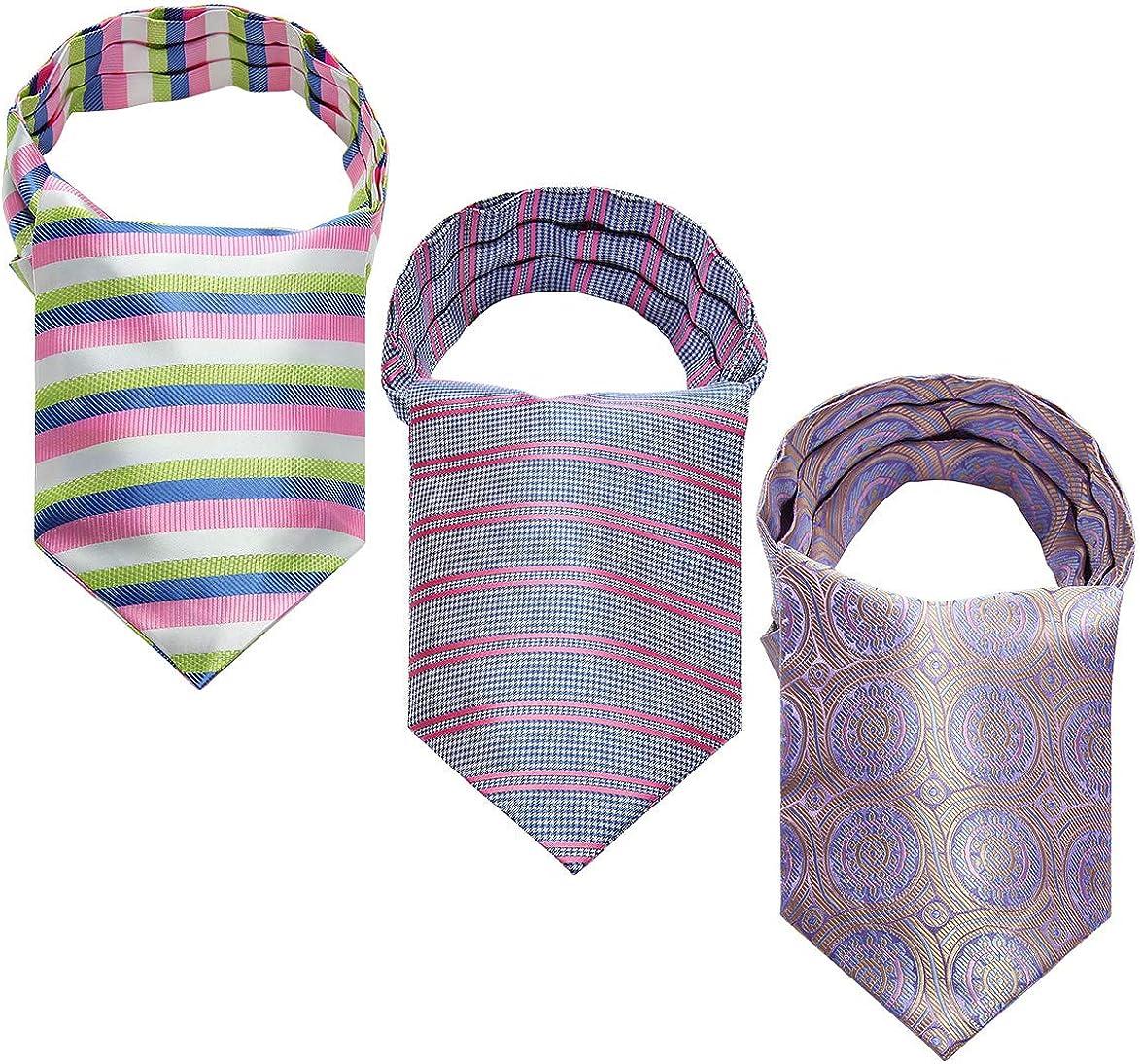 HISDERN Floral Paisley Stripe Cravat Ascot Tie for Men Wedding Party Cravat Scarf 3-Pack Combo