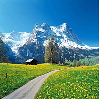 Hwhz Custom 3D Mural Wallpaper Modern Three-Dimensional Bedroom Tv Backdrop Swiss Alps Scenery Photo Wallpaper-350X250Cm