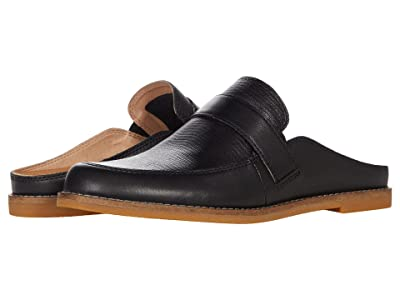 Taos Footwear Royal