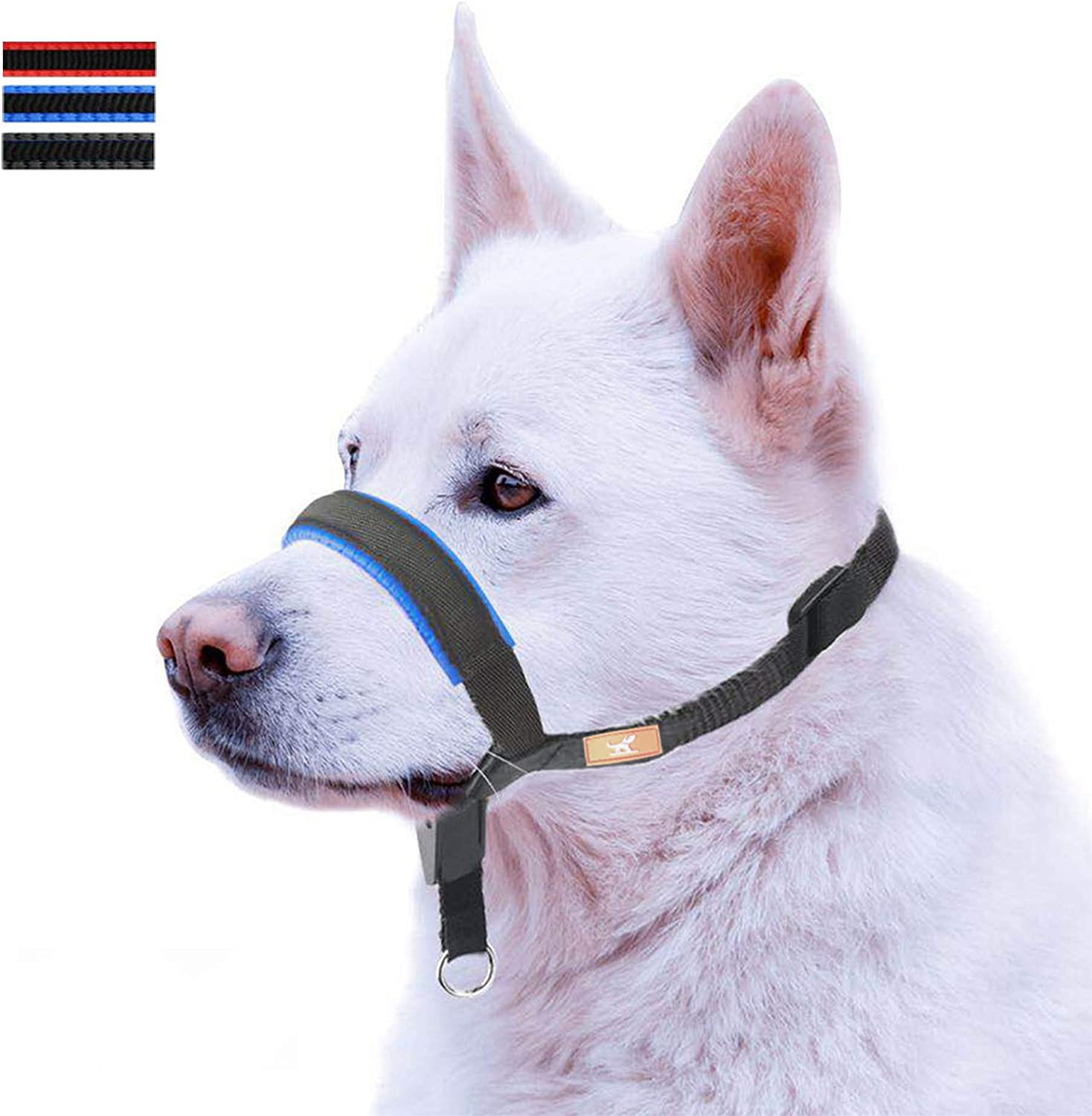 Selling rankings Financial sales sale Dog Head Collar with Leather Small Decoration for M