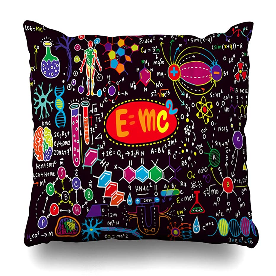 Pandarllin Throw Pillow Cover Doodle Board Scientific Formulas Calculations Physics Chemistry Math Chalk School Abstract Algebra Cushion Case Home Decor Design Square Size 16 x 16 Inches Pillowcase