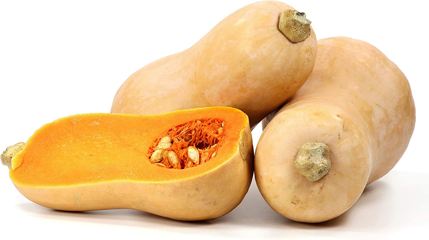 Sales of SALE items New product!! from new works Winter Squash Waltham Seeds Butternut