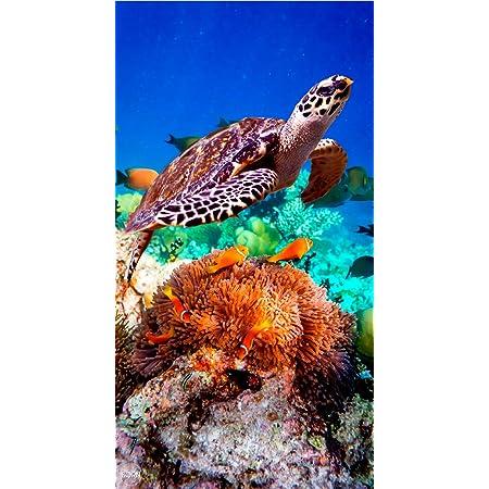 TEXTIL TARRAGO Toalla de Playa 90x170 cm 100/% Algodon Tortugas estampcaion Digital fotografica THD05