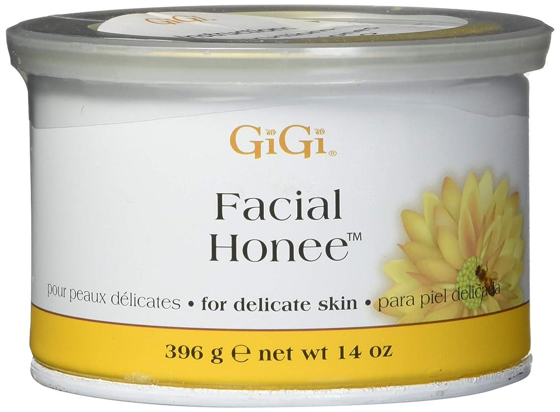 実業家拒否スロープGiGi Facial Honee, 14 Ounce by GiGi