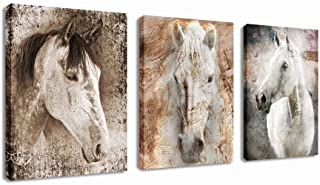 Canvas Wall Art Horse Picture Prints Modern Horses Artwork Vintage Abstract Painting Giclee Prints Contemporary Canvas Art for Home Office Decoration Framed Ready to Hang 12