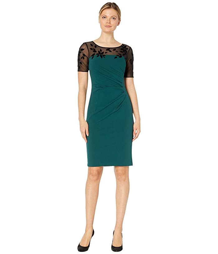 Adrianna Papell  Velvet Applique Crepe Sheath Dress (Hunter/Black) Womens Dress