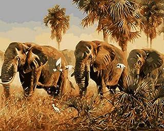 YYGM Elefante Desierto Pintar por números Juego Completo de Pintura acrílica den Buenos Regalos a Amigos y Familiares
