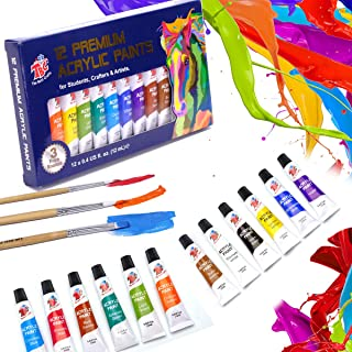 TBC The Best Crafts 12 Colors(12 x 12ml) Acrylic Paint Set for Professional Artists, Adults. Rock Painting, Clay Paint, Ca...