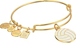 Alex and Ani Team USA Volleyball Bangle
