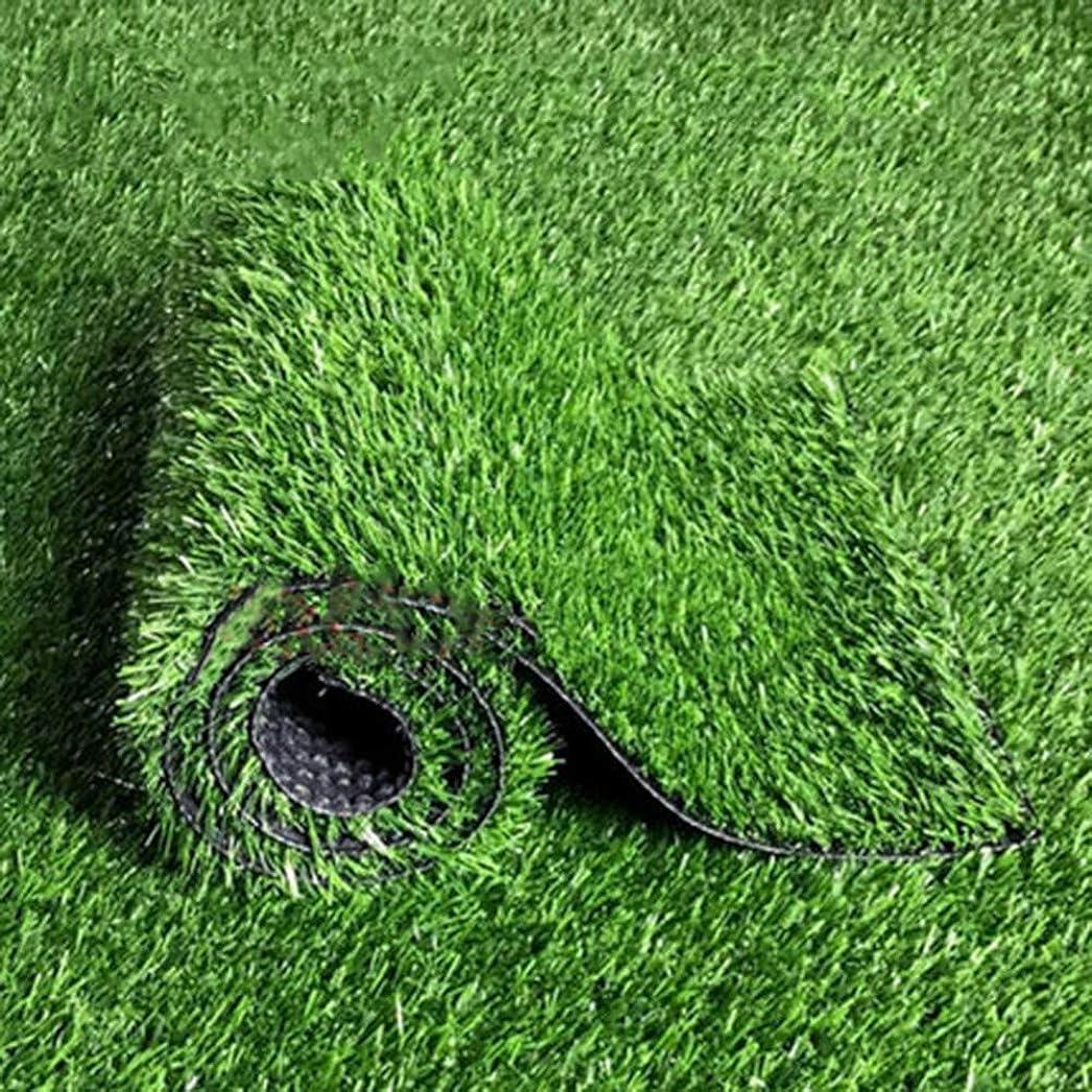 申請者解釈言い直す高密度 人工芝マット,厚く 22 Mm ターフマット 排水の穴 ペットターフ テラスのため バルコニー グラスラグ 装飾-グリーン 200*250cm200x250cm(79x98inch)