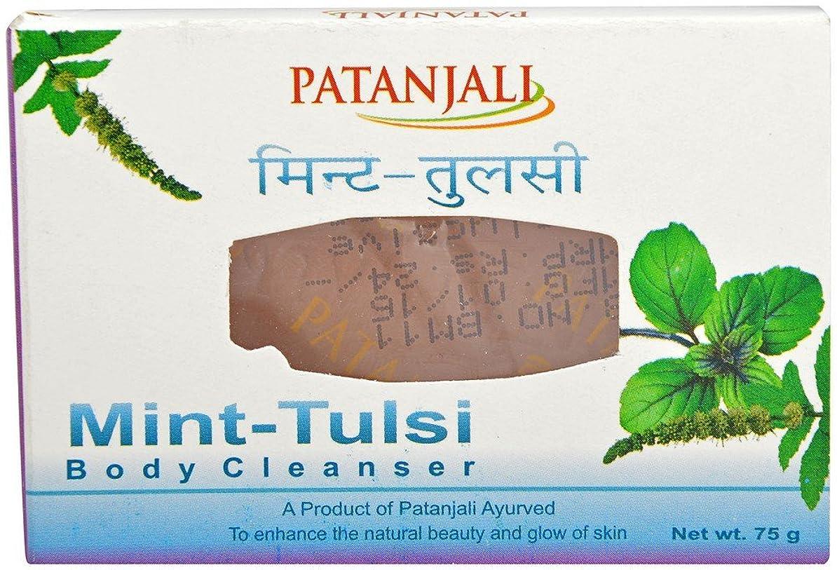 獲物十一演劇パタンジャリ ミント?ホーリーバジルソープ 75g×2個 アーユルヴェーダ インド産 Mint Tulsi Body Cleanser Ayurveda Patanjali India