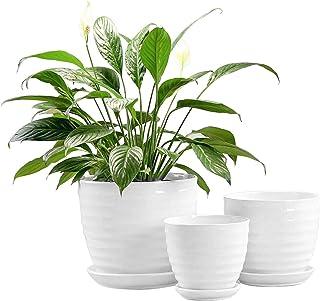 گلدان های گل سرخ مدرن سرامیکی Fasmov دور گلدان های گیاه کاکتوس مخلوط سفید ، مجموعه 3