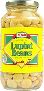 Ziyad Brand Premium Lupini Beans Delicious as a Snack or Appetizer! 1 Lb