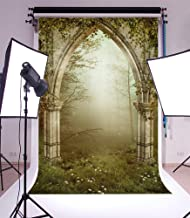 Laeacco Vinyl 5x7ft Photography Background Old Gothic Ruins with Ivy Fairytale Enchanted Garden Forest Arch Fog Grassland Theme Backdrops Portraits Shooting Video Studio Props 1.5x2.2m
