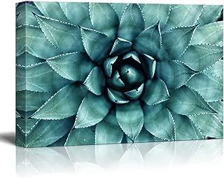 wall26 - Closeup Teal Succulent Plant Gallery - Canvas Art Wall Decor - 16