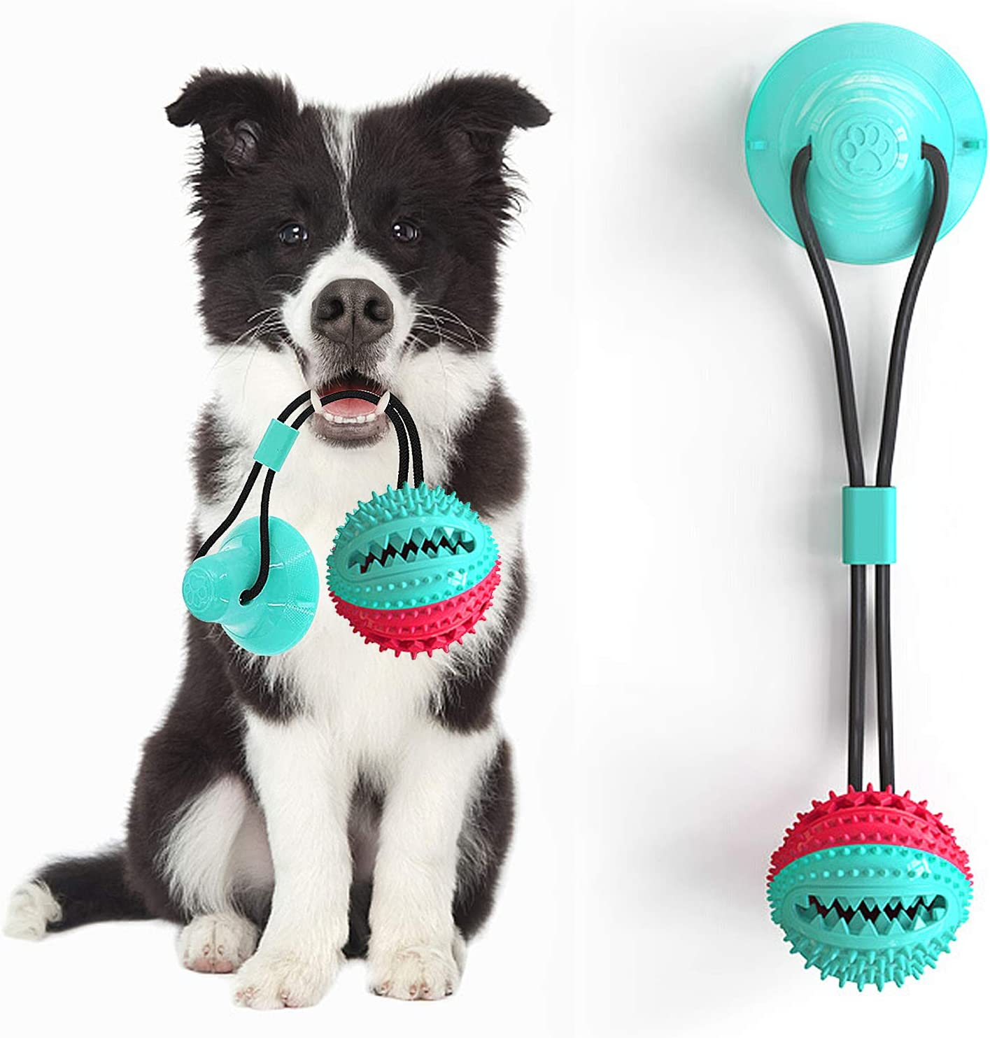 Suction Cup Dog Toy Inexpensive Chew Ball Interactive Po with 5% OFF Rope