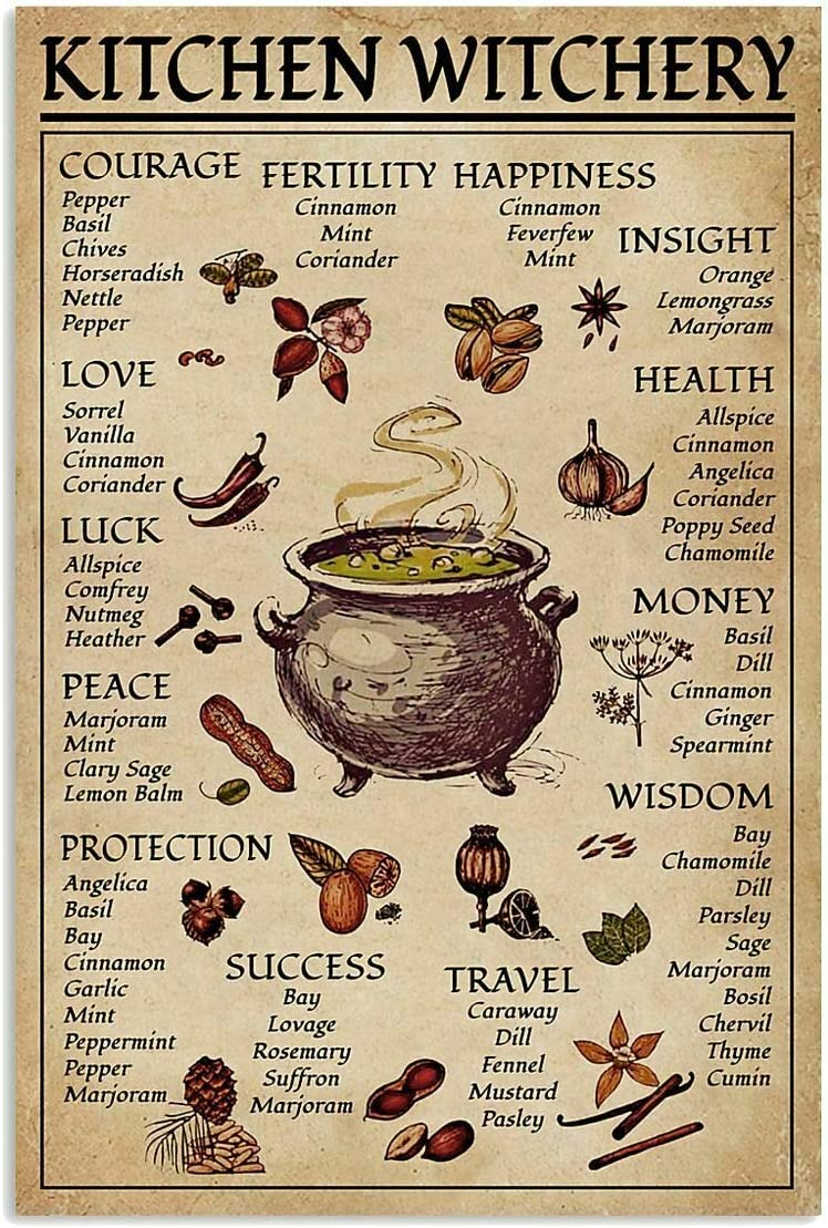 Tin Sign Fun Spice and Cooking Herbs Witchcraft Witch Fun World Education Science Classroom Infographic Tin Sign Great Retro Gifts and Decorative Door Wall School Farm Hospital Metal Sign 8x12