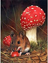 5D Diamond Painting Kits for Adults Kids Set,Full Drill Diamond Cross Stitch Arts Craft for Home Wall Decor Mouse And Mushroom 11.8x15.7in 1 Pack By Ueyoo