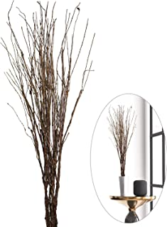 Best large decorative branches Reviews