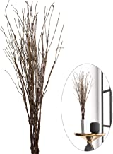 Best dried decorative branches Reviews