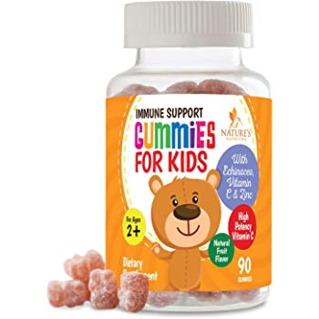 Kids Immune Support Gummies with Vitamin C, Echinacea and Zinc - Children's Support & Vitamin C Gummy, Tasty Natural Fruit Flavor, Vegan by Nature's Nutrition - 90 Gummy Bears