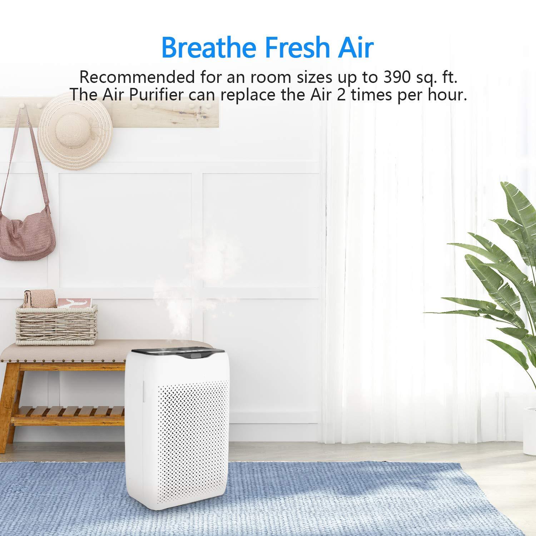 Purificador de aire COOCHEER con filtro HEPA y carbón activado ...