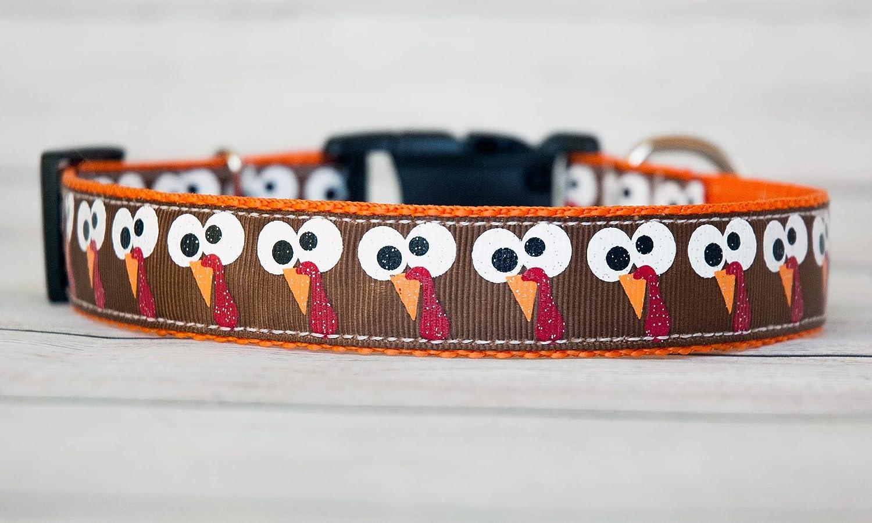 At the price of surprise Turkey Googlie Eyes dog collar. 1