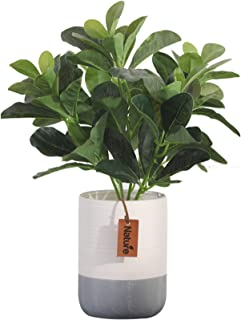 JIAJBG Flores Artificiales Bonsai Ceramic Flowerpot Decoración Simulación Potted Creativo Falso Verde Plantas Decorativas ...