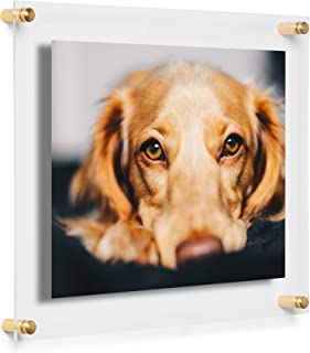 Cool Modern Frames Clear Floating Double Panel Acrylic Picture Frame, 8x10-Inch, Gold Hardware