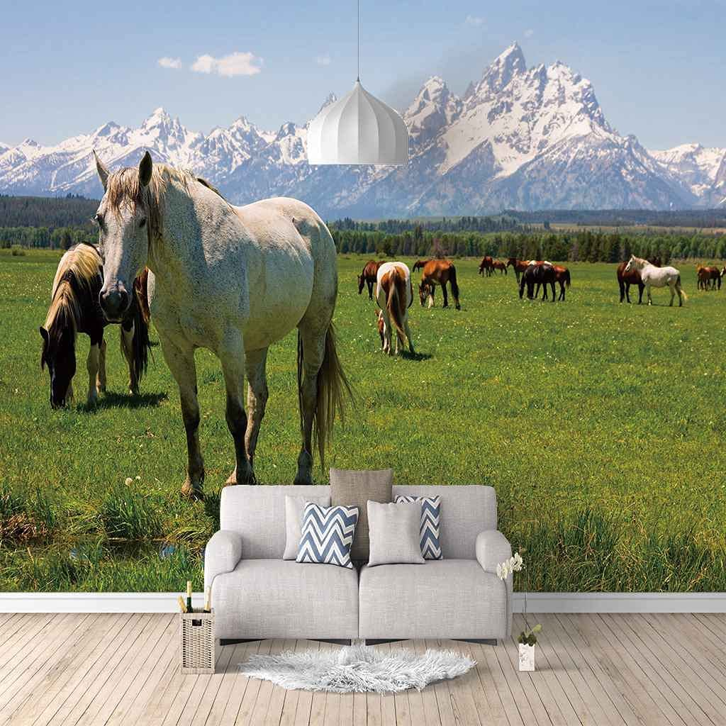 HWCUHL Wall Stickers Kids 5 ☆ popular Bedroom C Green Animal Grassland Horse Columbus Mall