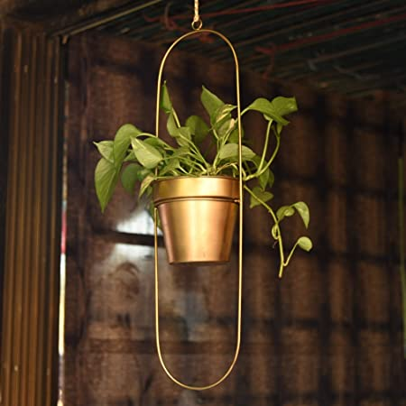1 BHK Interiors Capsule Oval Shaped Hanging Metal Planter in Gold Finish
