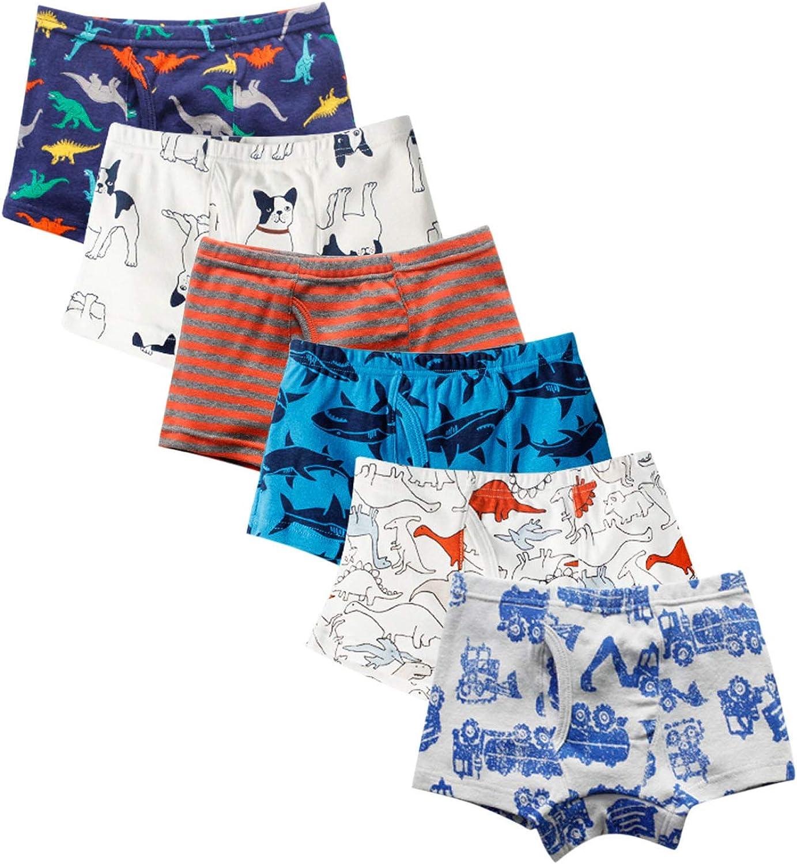 Amazon.com: Evelin LEE 6-Pack Baby Boys Underwear Cotton Boyshort Panties  Cartoon Soft Boxer Briefs: Clothing