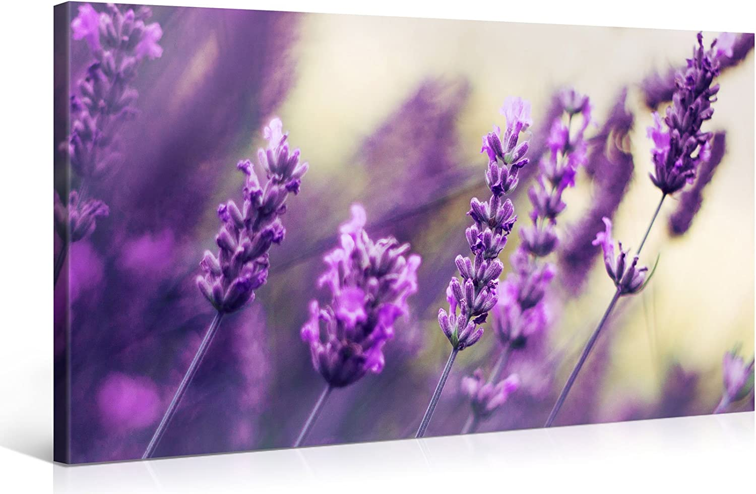 Large Canvas Print Wall Art Purple Lavender 40x20 Inch Flower Canvas Picture Stretched On A Wooden Frame Giclee Canvas Printing Hanging Wall Deco Picture E6465 Posters Prints