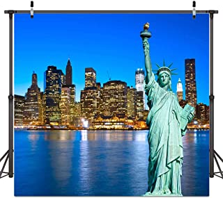 ST 6X6FT New York City Photography Backdrop Statue of Liberty Background for Personal Party Backdrop or YOUTUBE Background Props ST660213