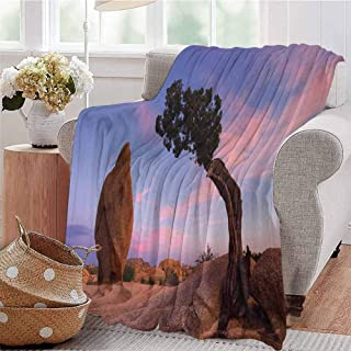 KFUTMD Warm Microfiber Blanket Bonsai Trees Twilight Blue Hour Peaceful Nature Rock Formation Violet Blue Pink Light Brown Bed Sleeping Travel Pets Reading W51 xL60