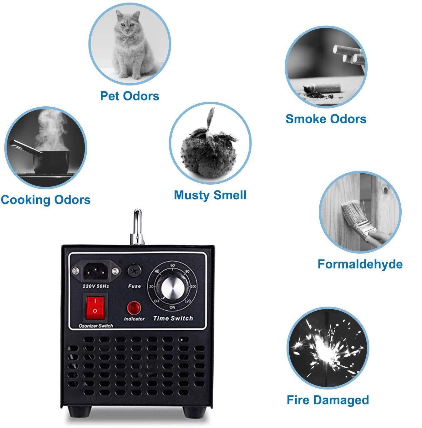 Lumemery Generador de ozono Industrial 10000mg/h O3 Ozonizador ...
