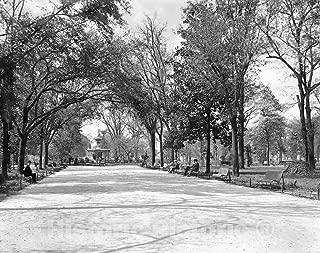 Restored Black & White Photo - Historic Savannah, Georgia - The Fountain in Forsyth Park, c1901-60in x 44in