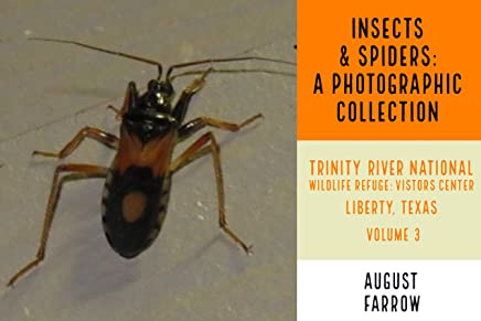 Insects & Arachnids: A Photographic Collection: Trinity River National Wildlife Refuge -  Visitors' Center: Liberty Texas - Volume 3 (Arthropods of Liberty Book 4) (English Edition)