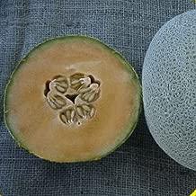 50 Planters Jumbo Melon Seeds